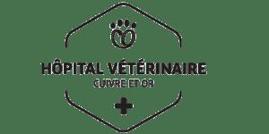 Logo de l'Hôpital Vétérinaire Cuivre Et Or à Rouyn-Noranda, Québec